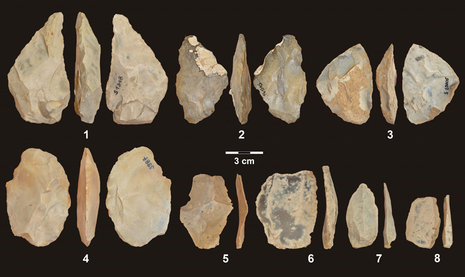 Stone tools from the Middle Paleolithic at Stajnia Cave: 1-3 Bifacial tools; 4 Preform of a bifacial tool; 5-8 Levallois flakes